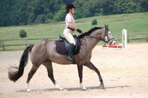 Alaska Horse Ranch Trainer & Instructor April Cantrell